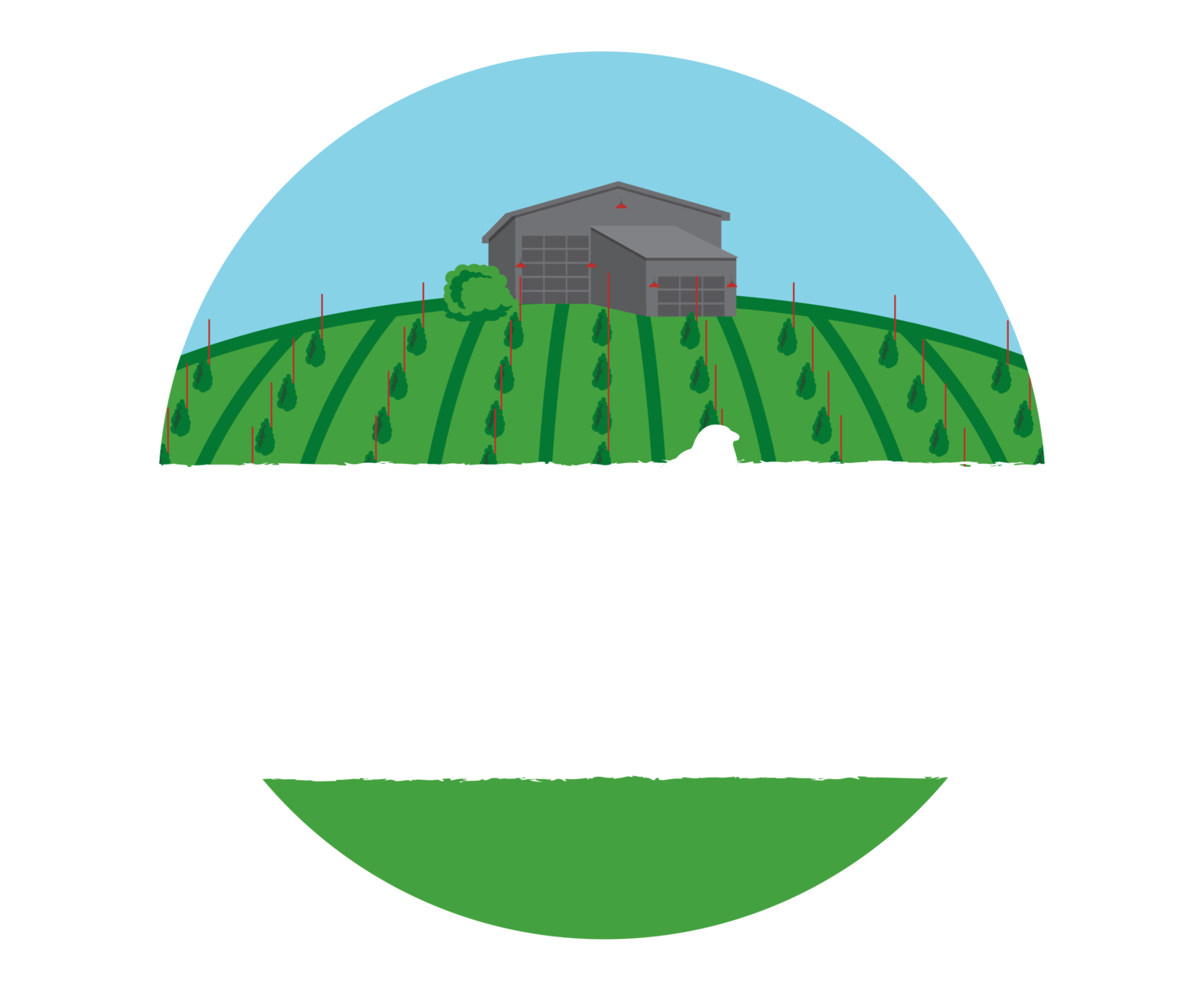 Black Birch Vineyard 10 Miler