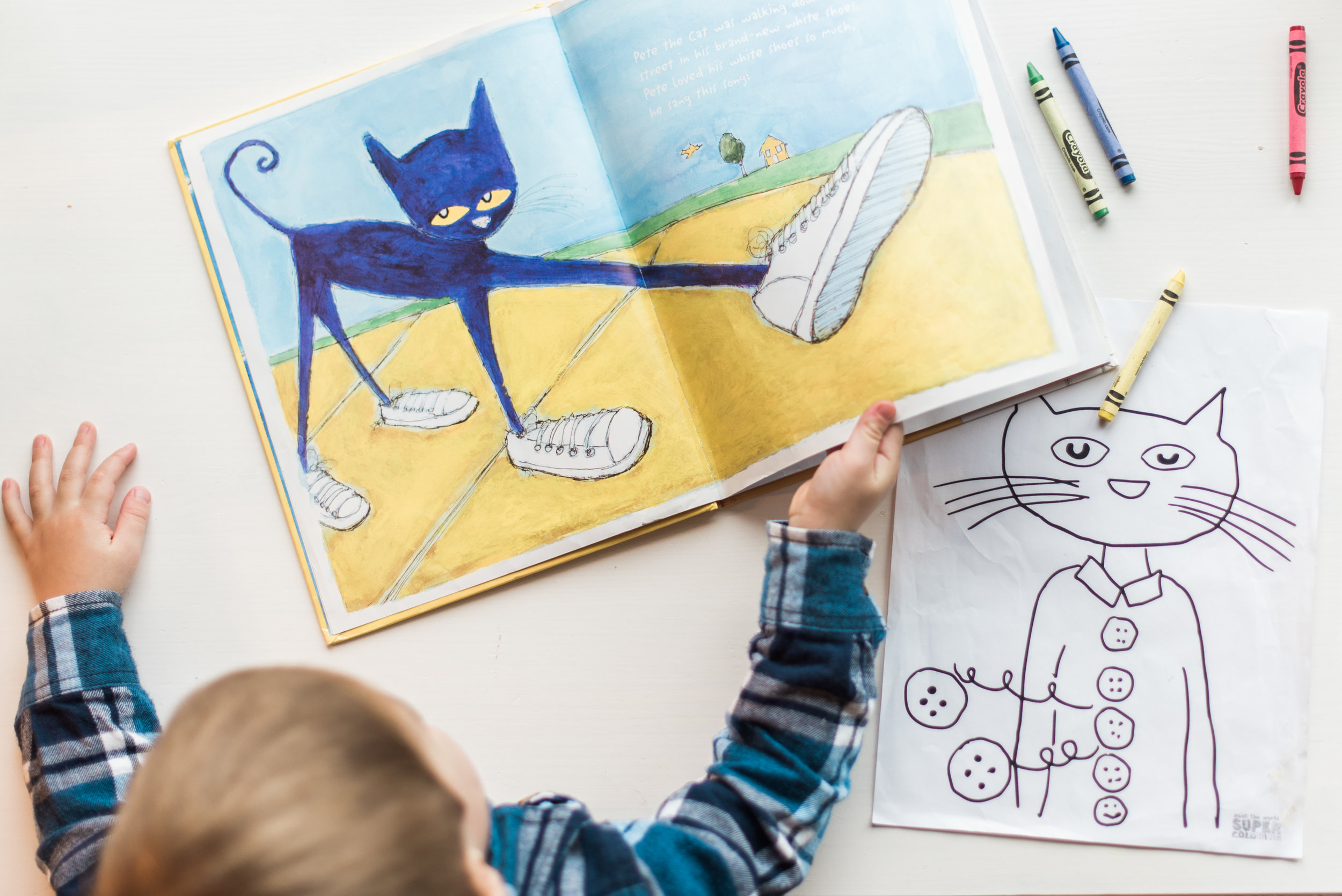 Reading with your toddler; Pete the Cat | Coconut and Rain