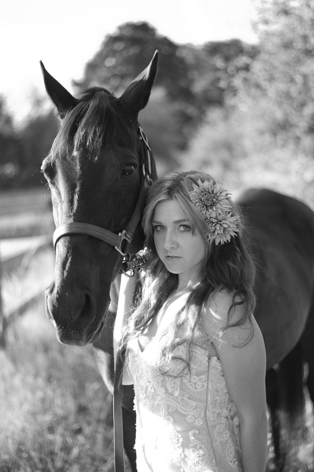 SW&Horse-24.jpg