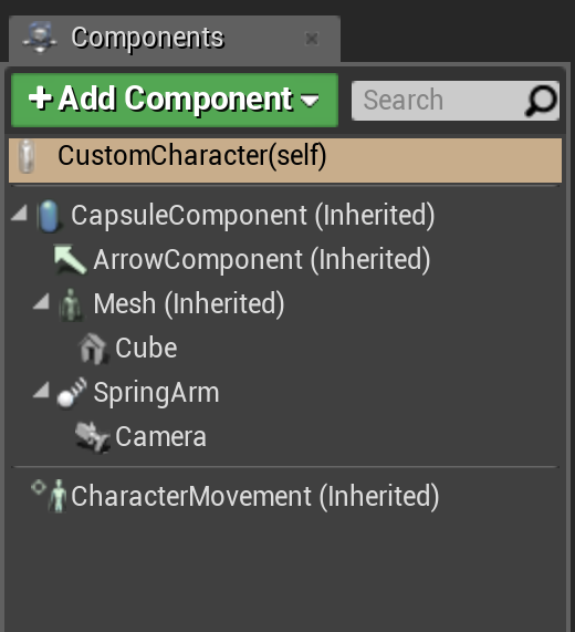 Components for the CustomCharacter