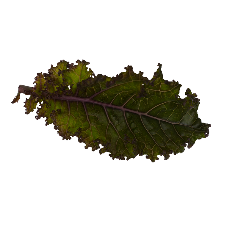 Red flamed kale