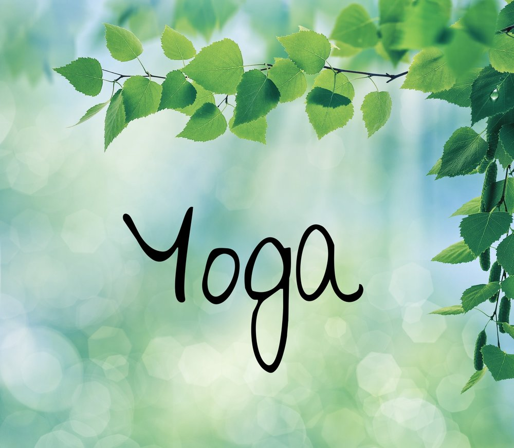 Yoga Classes in St. Paul and Mahtomedi - Join us!