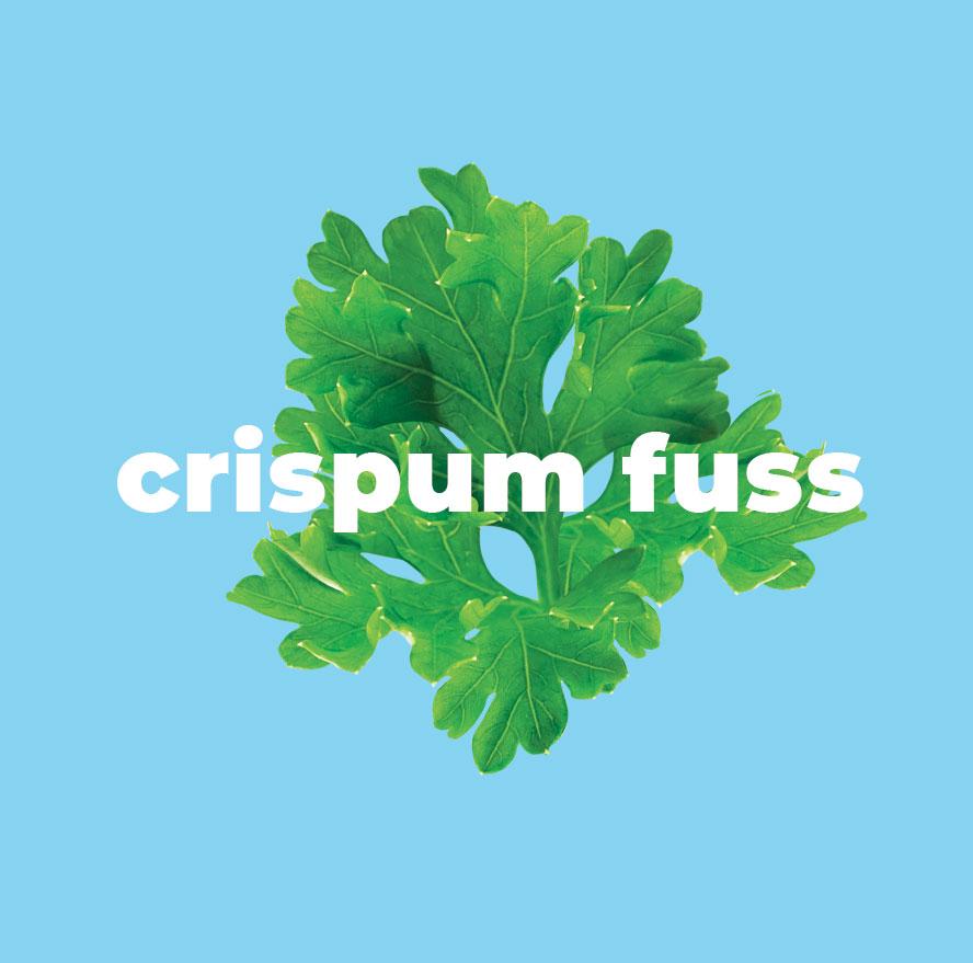 cripsumFuss.jpg