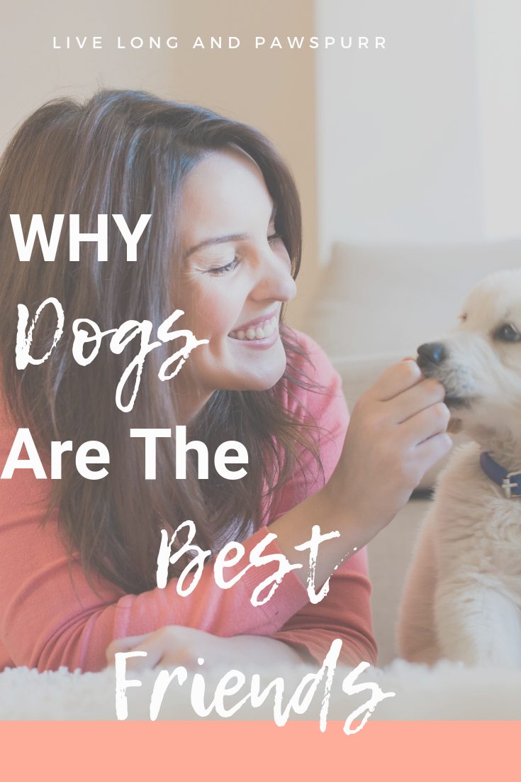 "Why Dogs Are Man's Best Friend"" class="