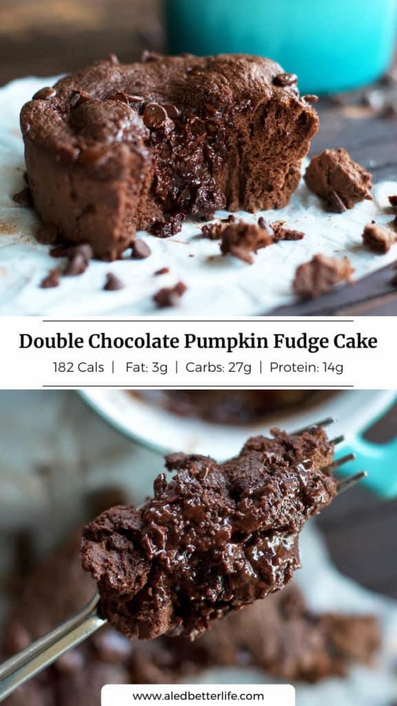 Double Chocolate Pumpkin Fudge Cake