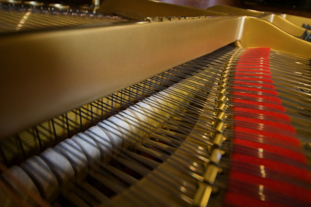 view of grand piano strings, soundboard, plate, agraphs and interior view of the pianos hammers.