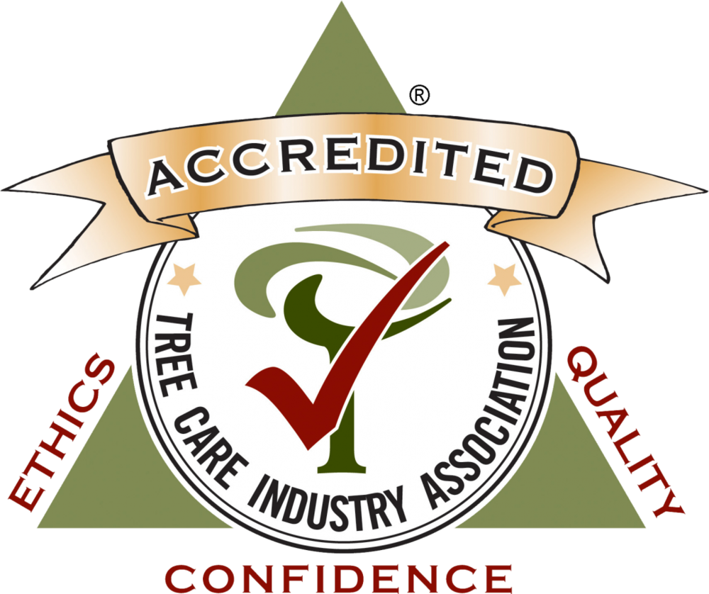 TCIA Accredited Business -