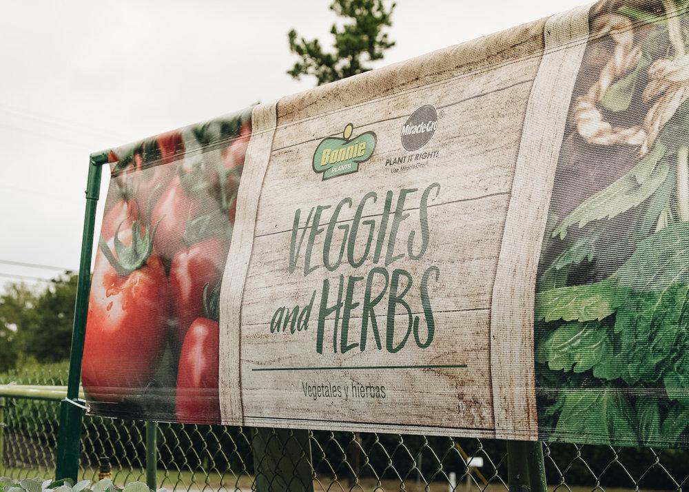 veggies_and_herbs.jpg
