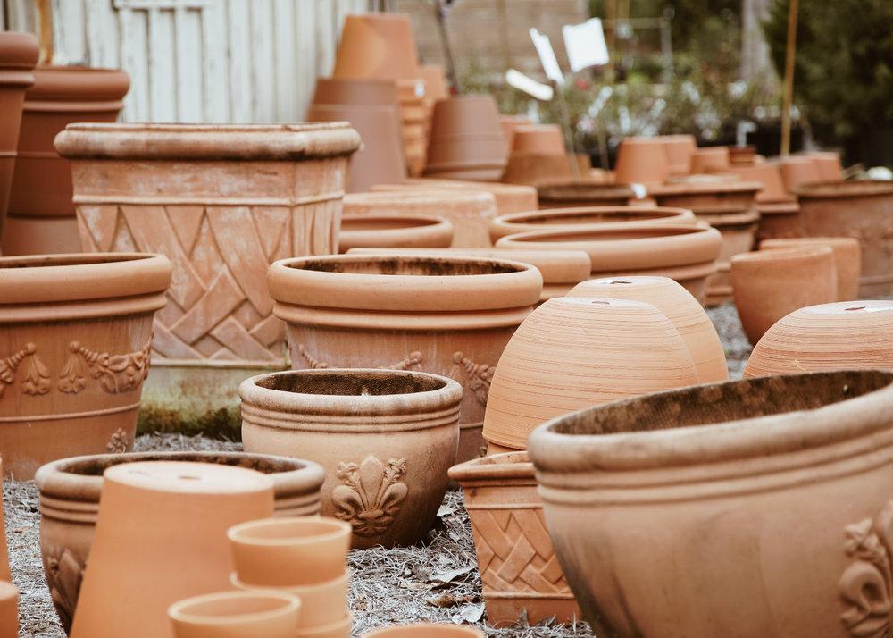plant_planter.jpg