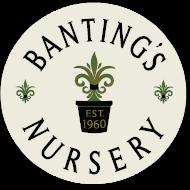 bantings__logo_small.png