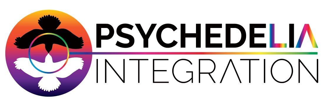 PsychedeLiA Integration - Psychedelic Integration, Los Angeles