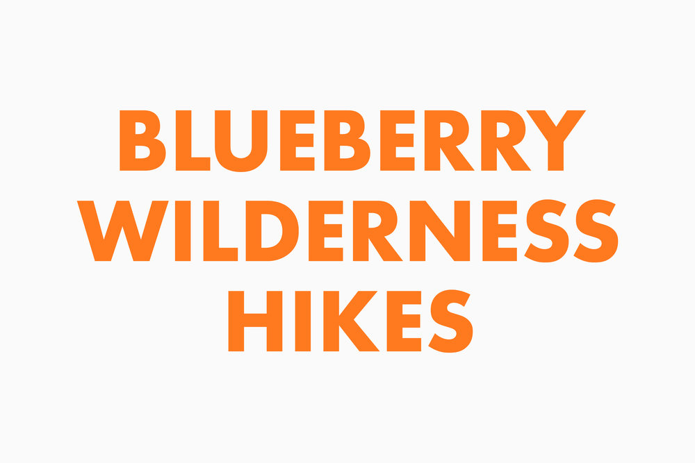 blueberry_wilderness_hikes.jpg