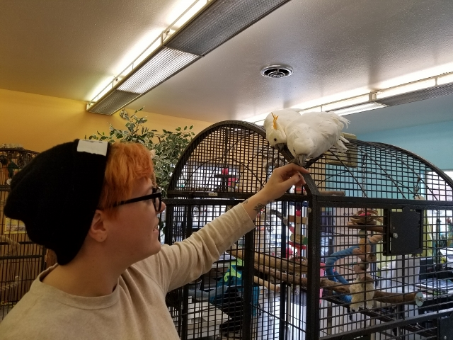 Heather Tuel is Shelter Manager for Metro Denver Parrot Rescue. Photo by Carrie Dow.