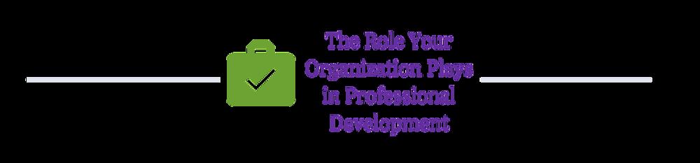 professional-development-software-engineers-woven