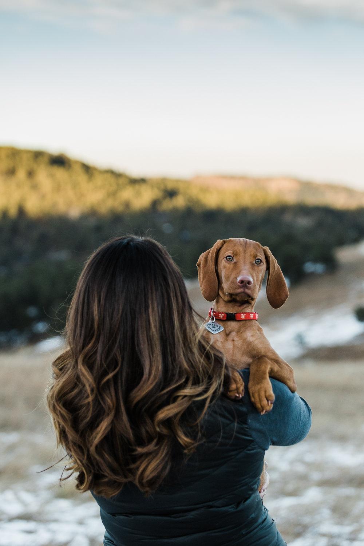 Golden Colorado pet photographers030.jpg