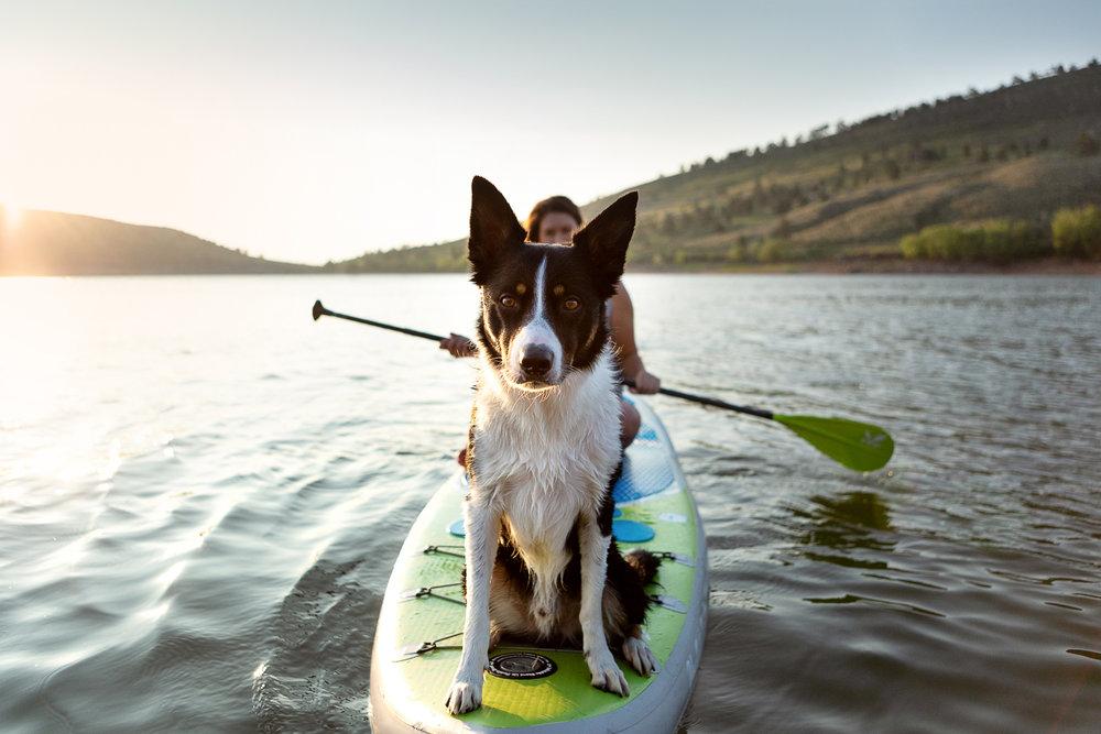 Colorado adventure pet photography007.jpg