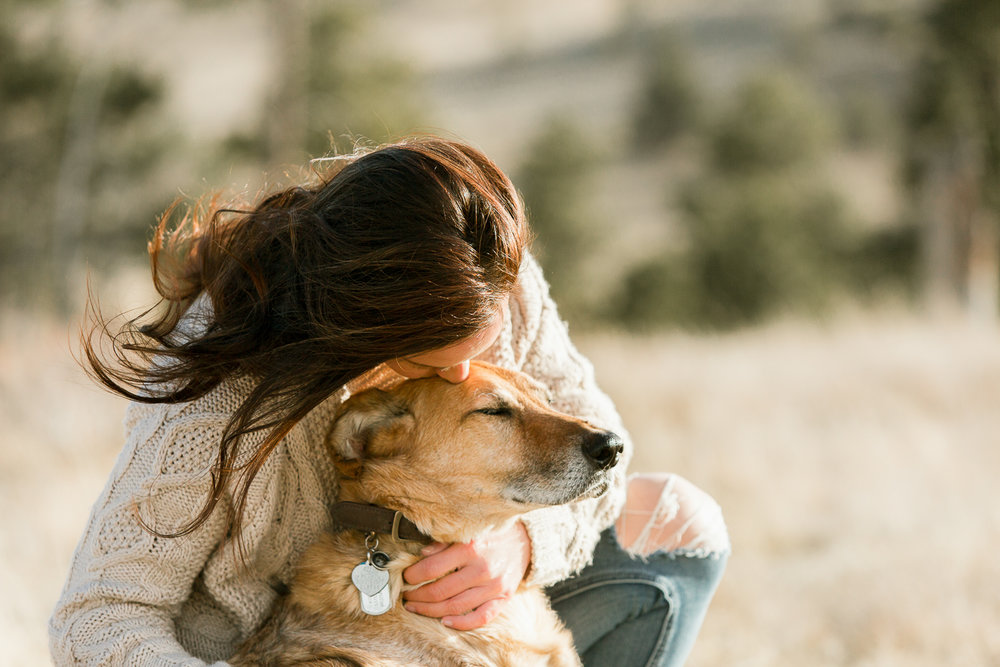 Best dog photographers in Boulder021.jpg