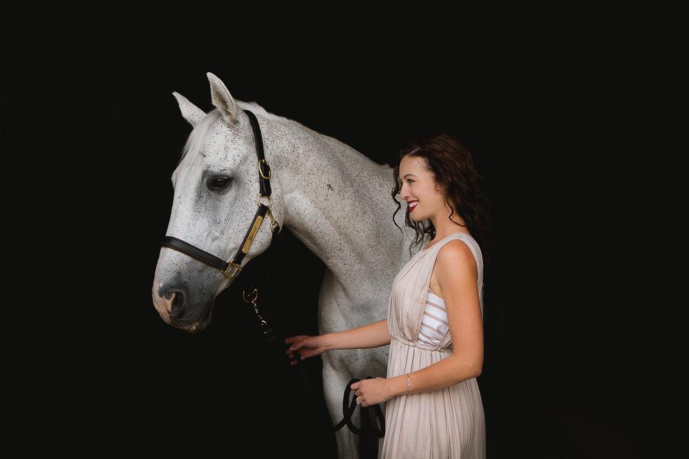 colorado sport horse photographer_001.jpg