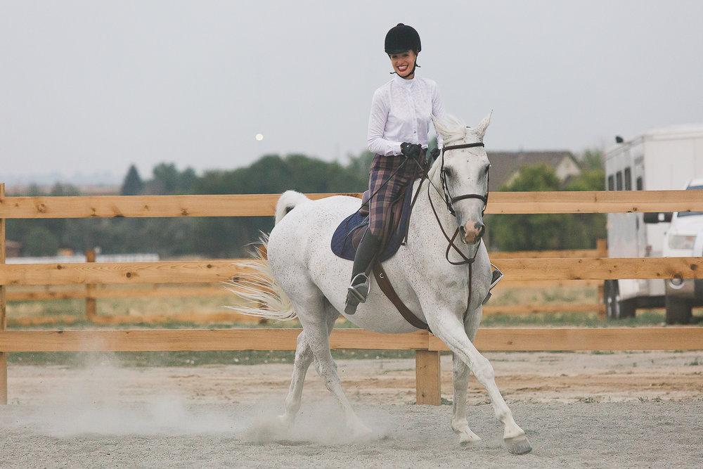 colorado sport horse photographer_007.jpg