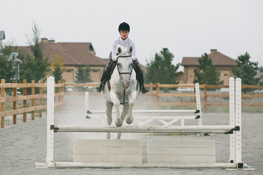colorado sport horse photographer_009.jpg