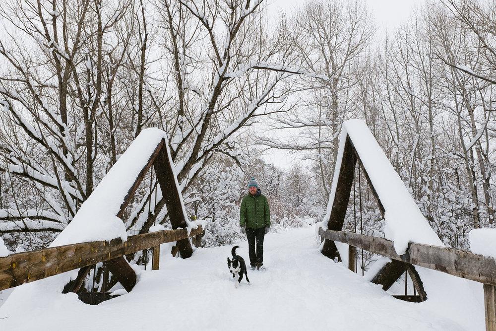colorado winter dog photography inspiration_001.jpg