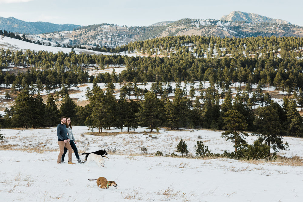 winter pet photography inspiration_009.jpg