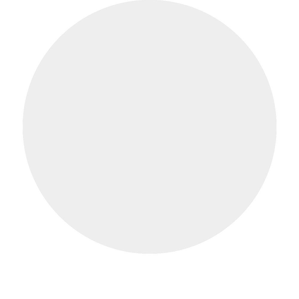 C.I. TiO2(White) -