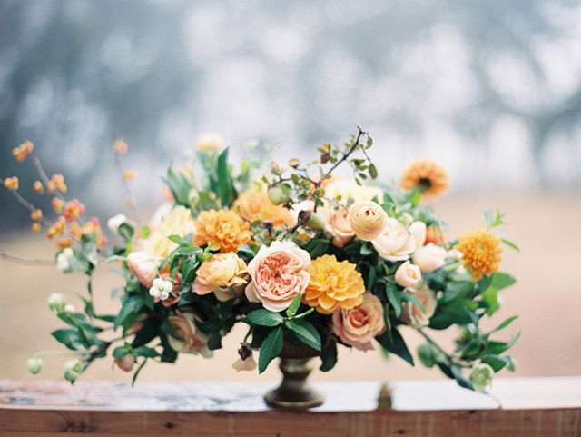 We're getting all the moody fall feels from this stunning arrangement by: @wilderfloralco  @winsomeandwright | @wilderfloralco | @silkandwillow|  @tinkertintrailerco | @fieldtotableevents |@sidecar_slo | @swallowcreekranch | @ruedesinebridal | @btarr_hairmakeup | @cbbakeshop | @gracelorenzenevents | @elaneventrentals | @otisandpearl | @centralcoasttentandparty | @markbrownfilms | @deadwintercarpenters | @thefindlab  #happyfallyall #fallwedding #harvestwedding #moodyvibes #swallowcreekranchwedding #swallowcreekranch  #ranchwedding #barnwedding #coastalranchwedding #californiawedding  #cayucoswedding #sanluisobispowedding #slowedding #centralcoastwedding #centralcoastweddingvenue #californiaweddingvenue  #805wedding  #swallowcreekweddings