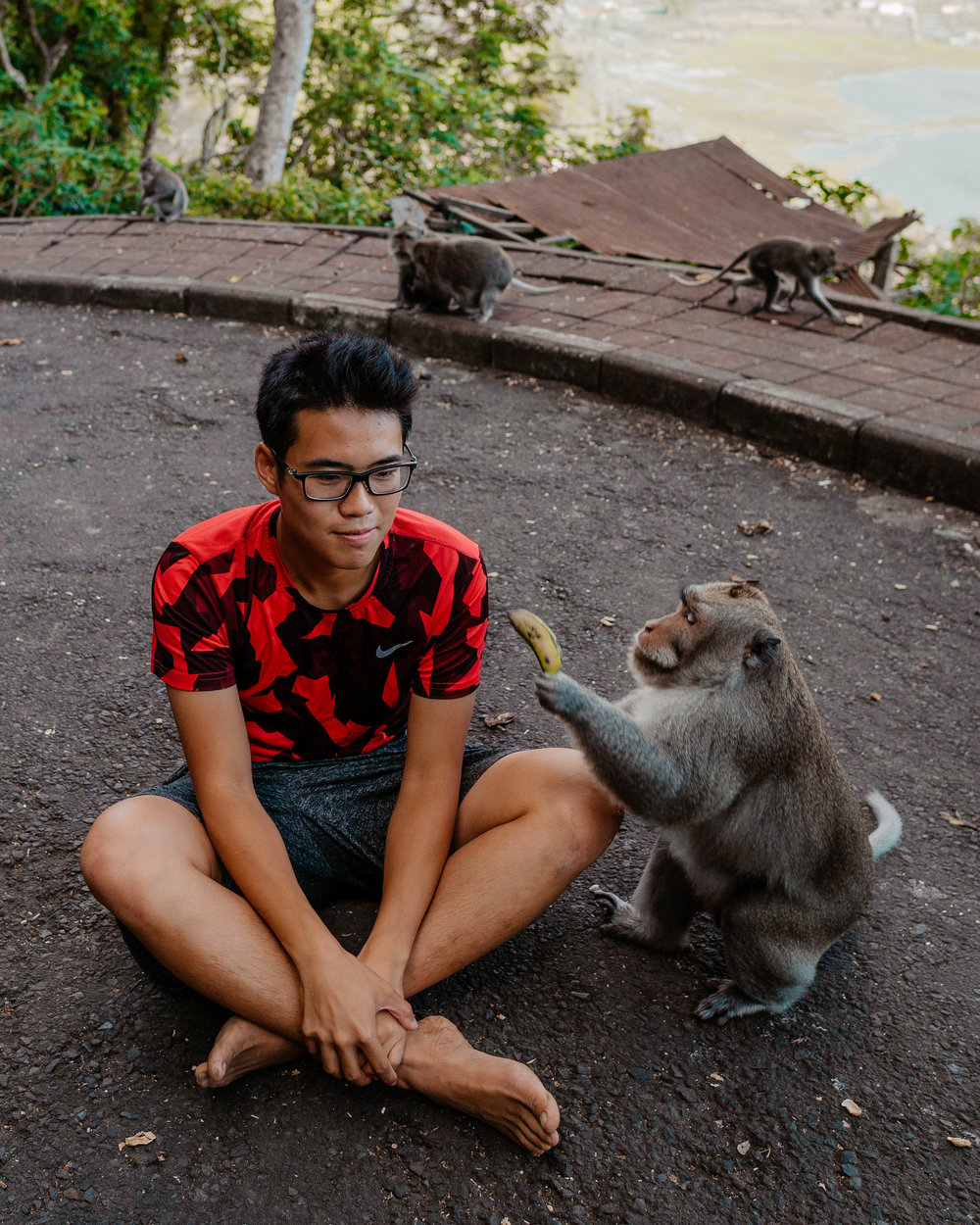 I put a banana on my head and this monkey ran to me and grabbed it. Thank you  @Jeffisy  for grabbing this shot of me!