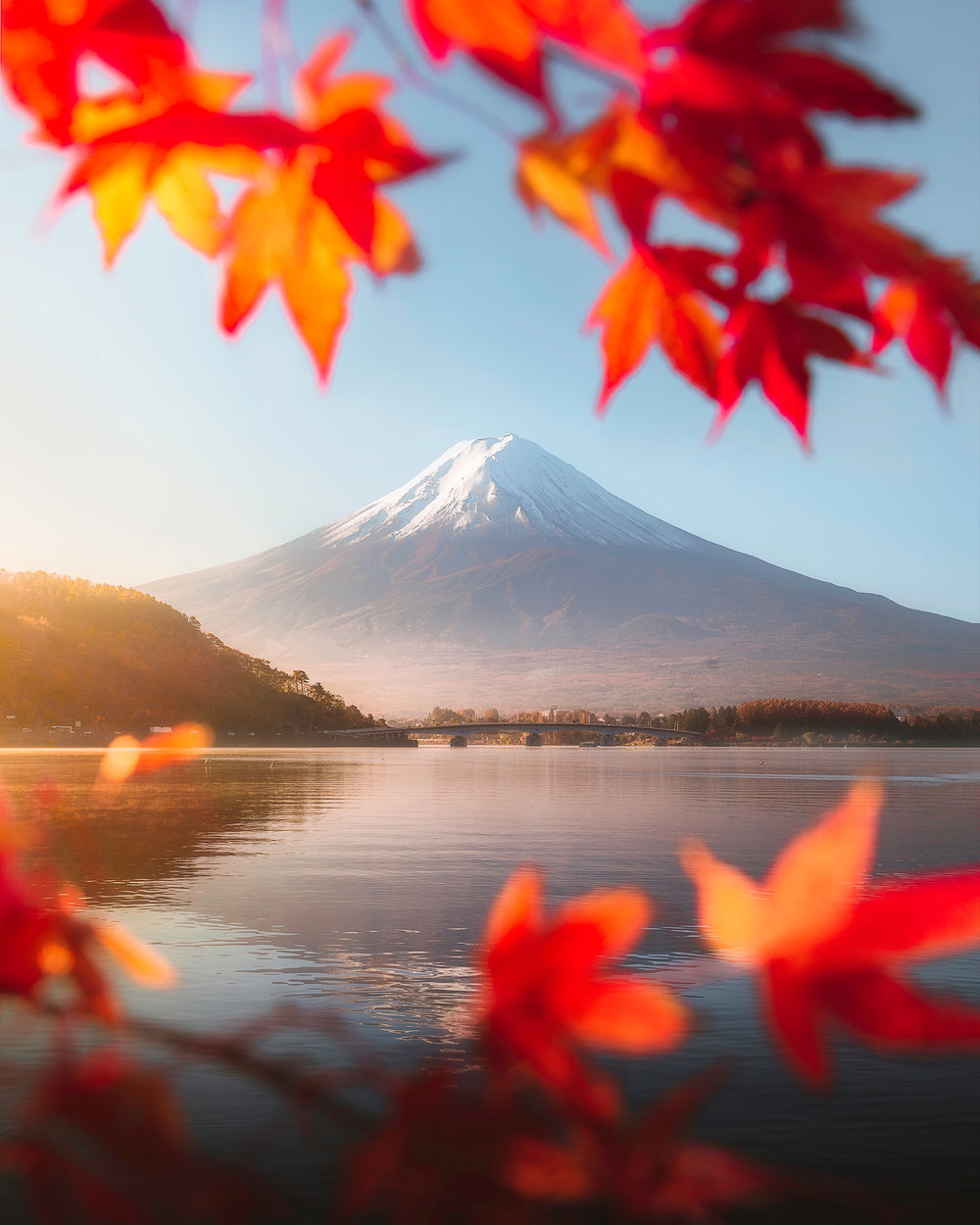 Visiting in the Autumn means catching the beautiful foliage as it changes colours. This was shot from Lake Kawaguchi with the foliage framing Mt. Fuji in the background.
