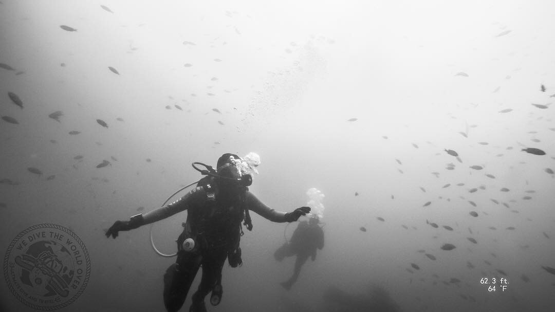Ultimate Dive And Travel