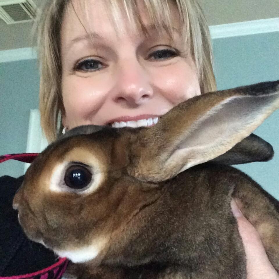 Bunny    January 5, 2016