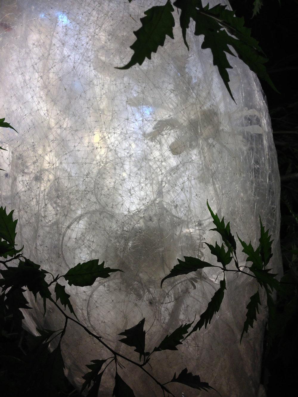 Plankton Pod install detail.jpg