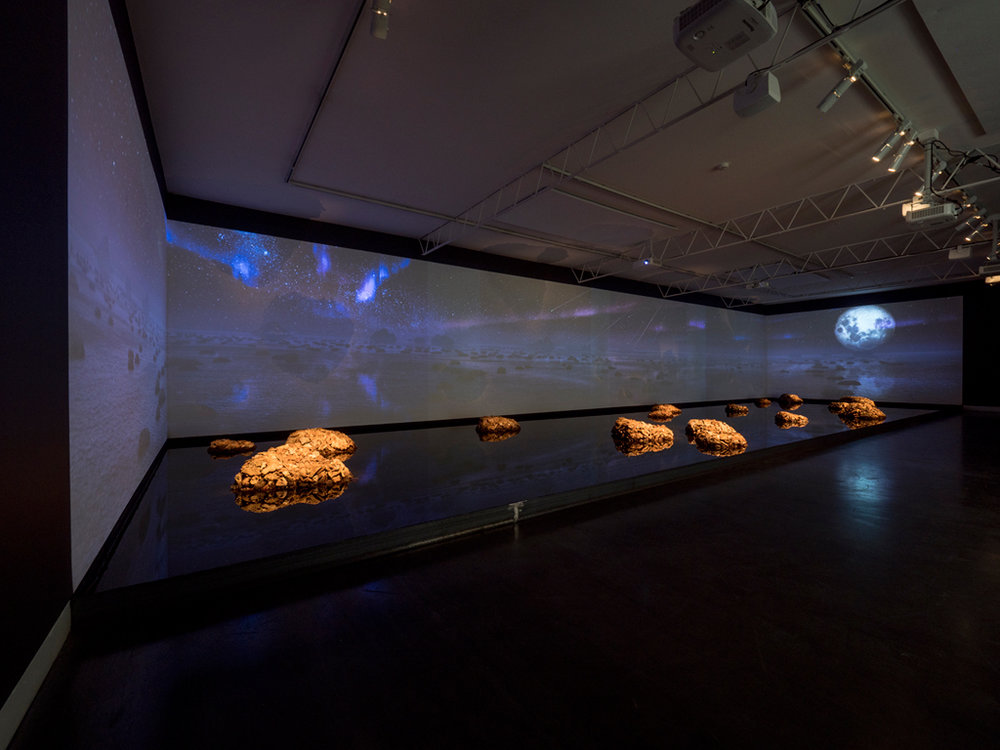 James Darling & Lesley Forwood,  Living Rocks: A Fragment of the Universe , 2018 Digital video (20 minute loop) 1.5 tonnes Mallee root & 4,000 litres of water 16.12 x 4.64 m