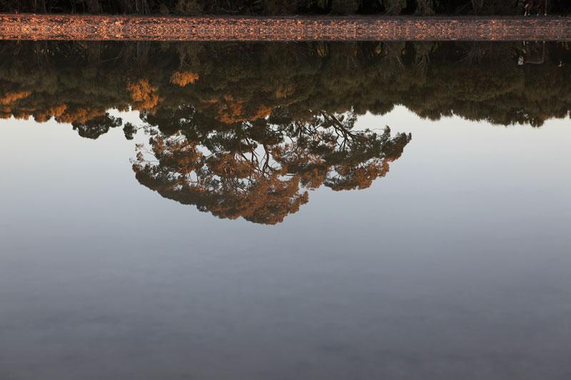James Darling,  Black Duck Lake Watertable 2 , 2010, hahnemuhle photo rag, 40 x 60 cm