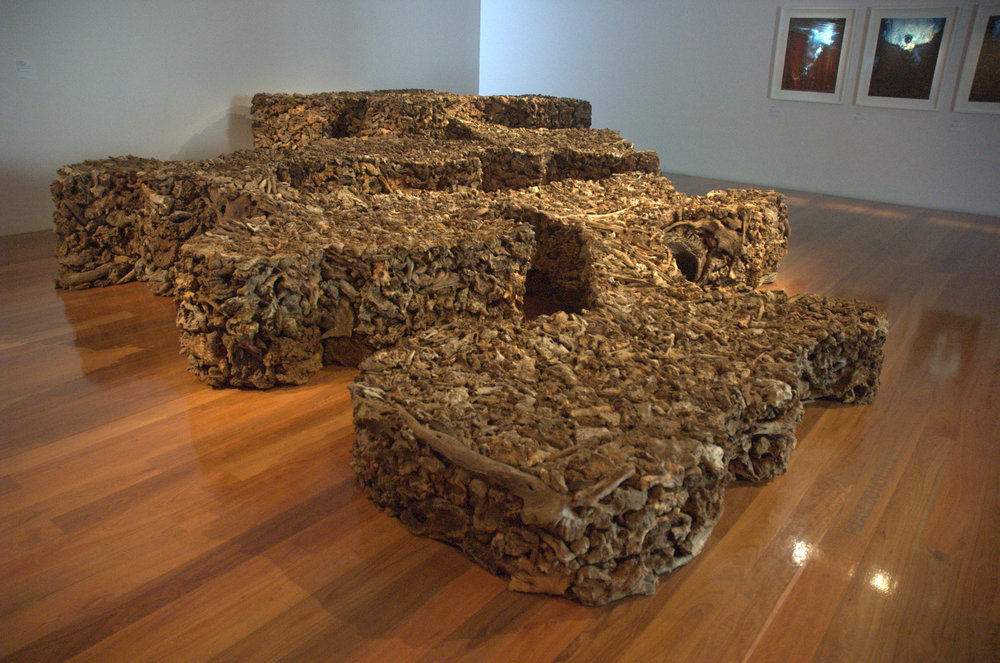James Darling & Lesley Forwood,  Everyone lives downstream 2 , 2007, Mallee roots, at Wonderful World, Anne & Gordon Samstag Museum of Art