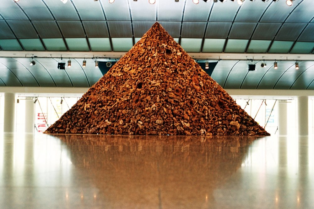 James Darling & Lesley Forwood,  Triangle 2 , 2005, 8 tonnes Mallee roots, 3.5 x 8.8 x 1.0 m, The Esplanade National Performing Arts Centre, Singapore