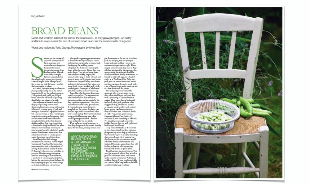 Ingredient: Broad Beans, Waitrose Food Illustrated