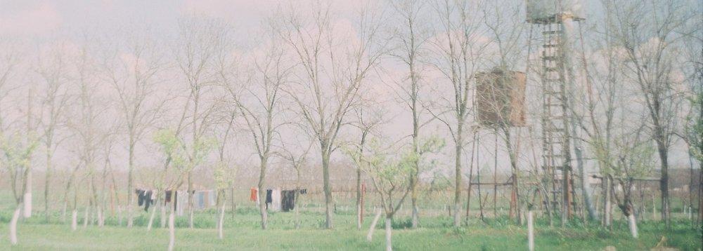 mirela-petre-corbu-nou-1.jpg
