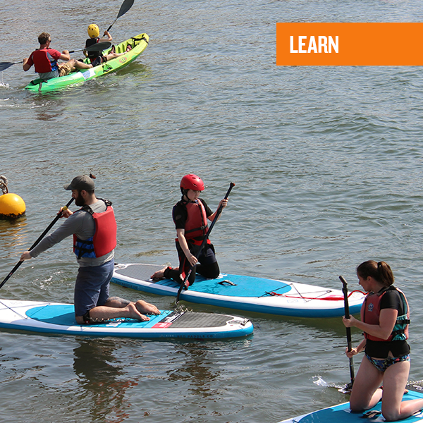 PADDLEBOARD-Learn.png