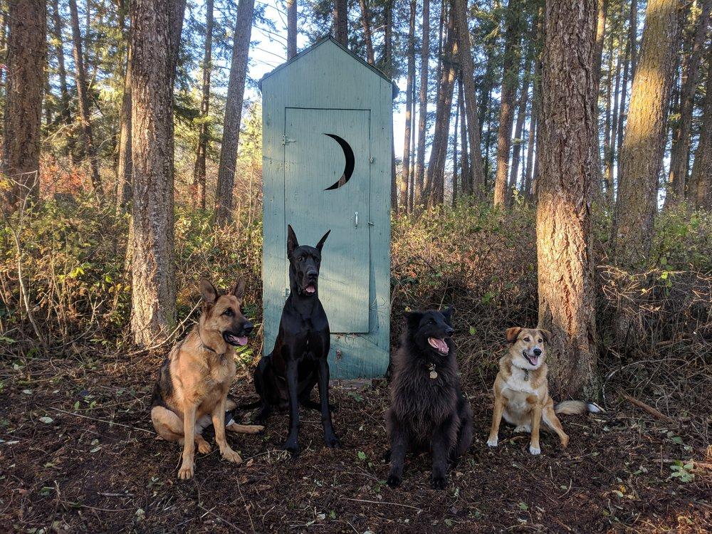 Mako, Zephyr, Gemini, Frodo