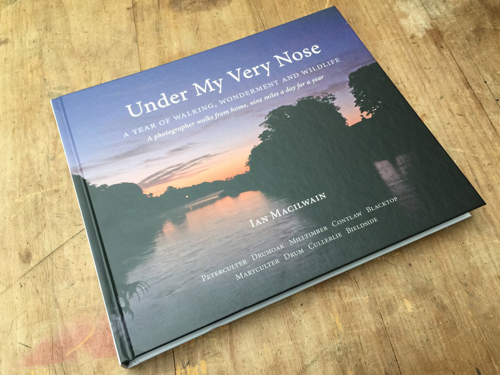 Ian Macilwain's recently self-published book,  Under My Very Nose
