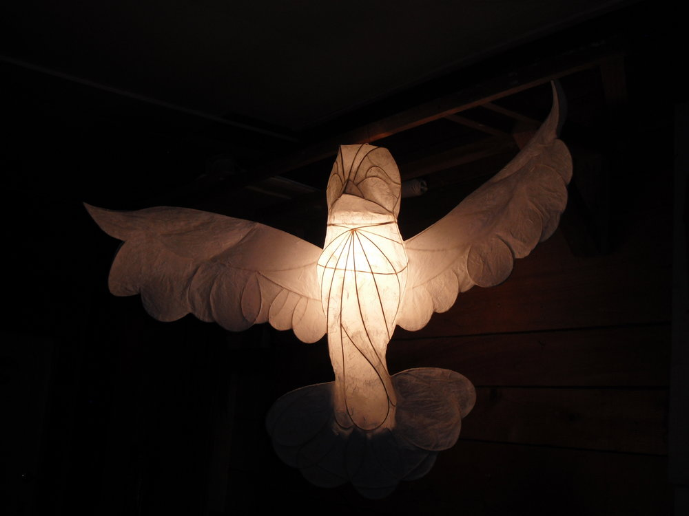 Illuminated Dove