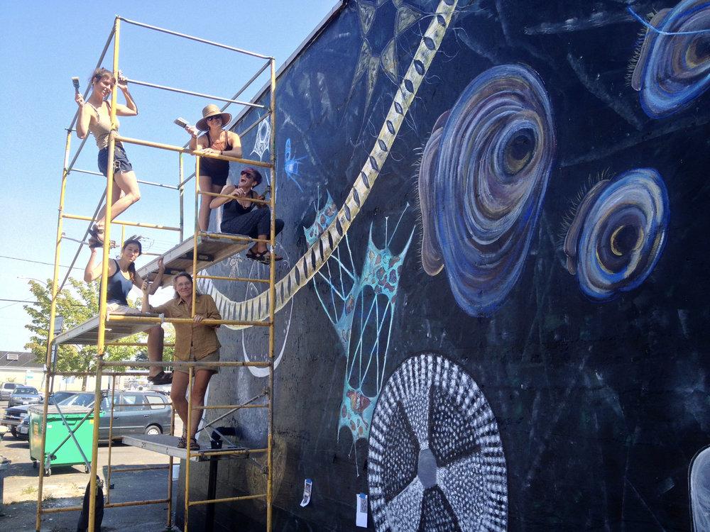 Plankton+Volunteer+Scaffold.jpg