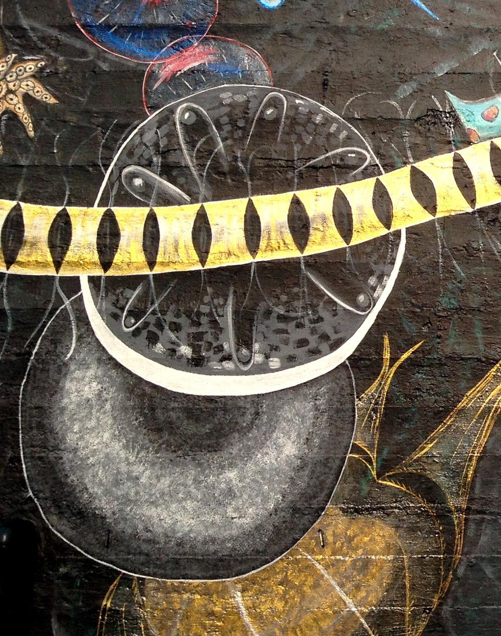 Plankton Diatoms.jpg