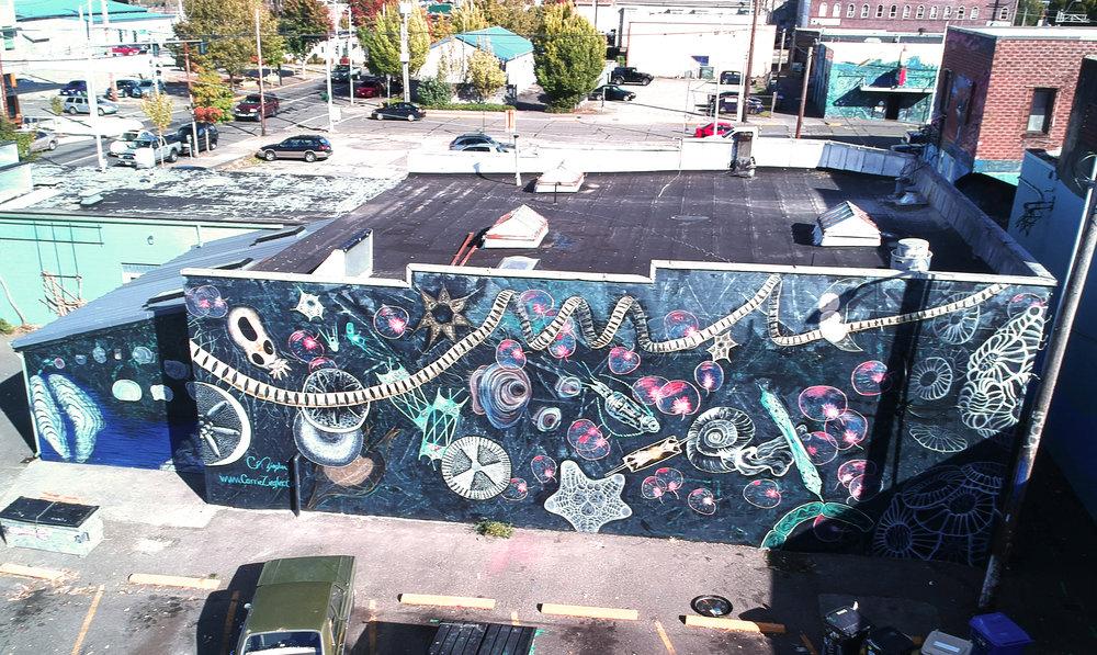Plankton Mural Aerial.jpg