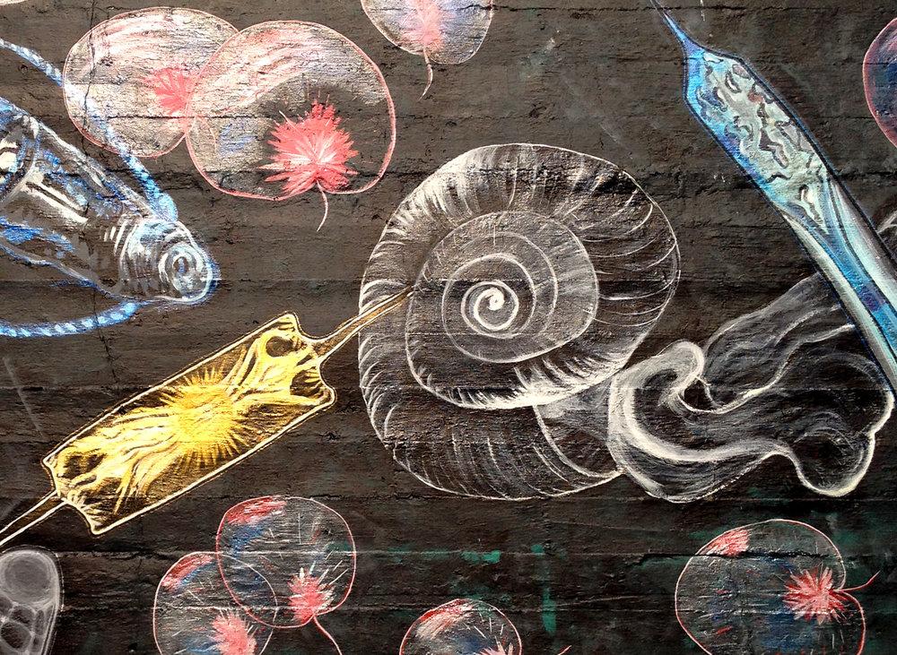 Plankton Mural Detail 1.jpg