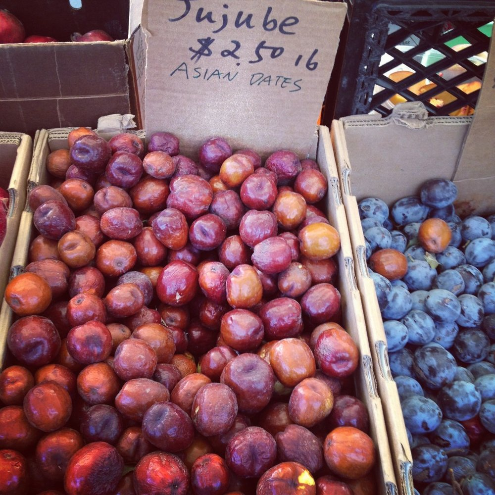HarvestJujubes-1024x1024.jpg