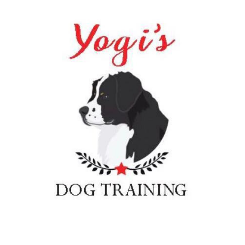 Yogi's Dog Training