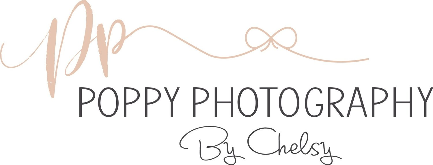 poppy photography By Chelsy